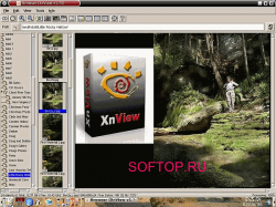 XnView 1.95 Final Rus